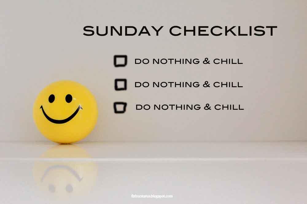 Sunday checklist , do nothing & chill, do nothing & chill, do nothing & chill.