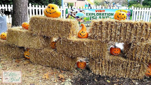 Dutch Wonderland, halloween, pumpkins