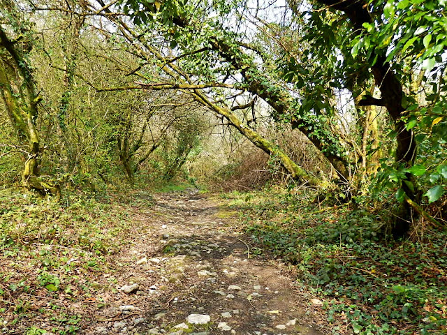 Footpath in Gover Valley, St.Austell