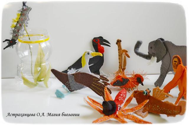 magija-biologii-palchikovyj-teatr-slon-kafrskij-voron-surikat-ilistyj-prygun-osminog-albatros-orangutan-antichnaja-volnjanka-volosataja-gusenica-seraja-aulija