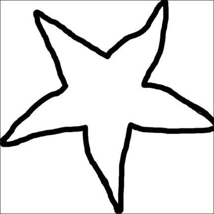 Faux Sequin Starfish Tank