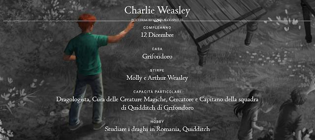 Scheda di Charlie Weasley