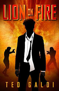Lion on Fire: A casino-heist thriller book by Ted Galdi
