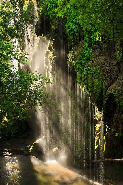 Gorman Falls: A lush oasis, hidden in Texas hill country.