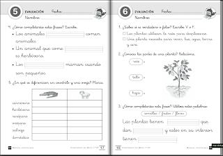 Sciences 4 primaria exercises