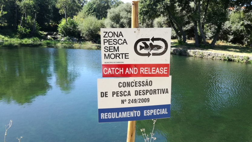 Zona ade Pesca - Catch and Realease