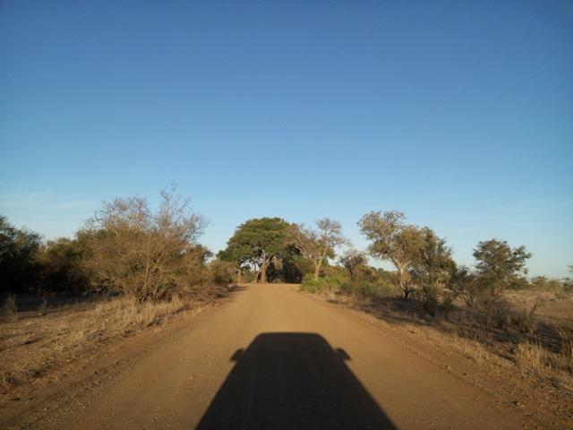 Paisajes alucinantes en las carreteras de Sudáfrica