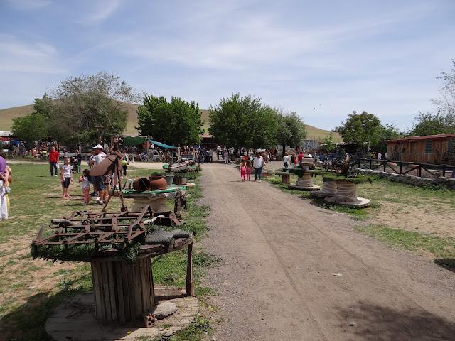 Un domingo en Burrolandia