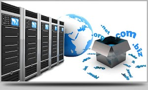 Nama Domain dan Web Hosting