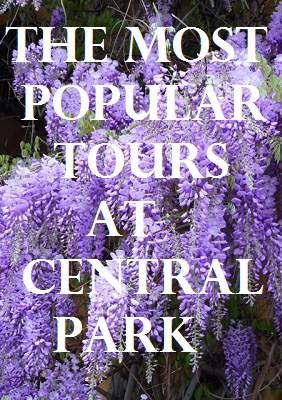 Most Popular Tours at Central Park in New York