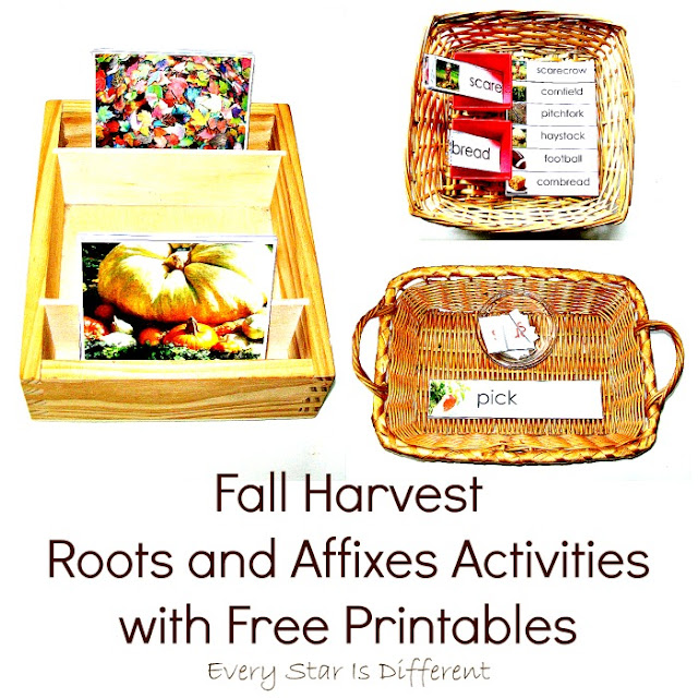 Fall Harvest Roots and Affixes