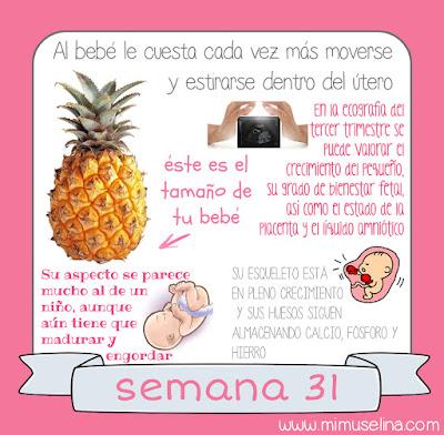 tu bebe semana a semana libro diario album recuerdos embarazo semana 31 feto tamaño comparativa frutas piña