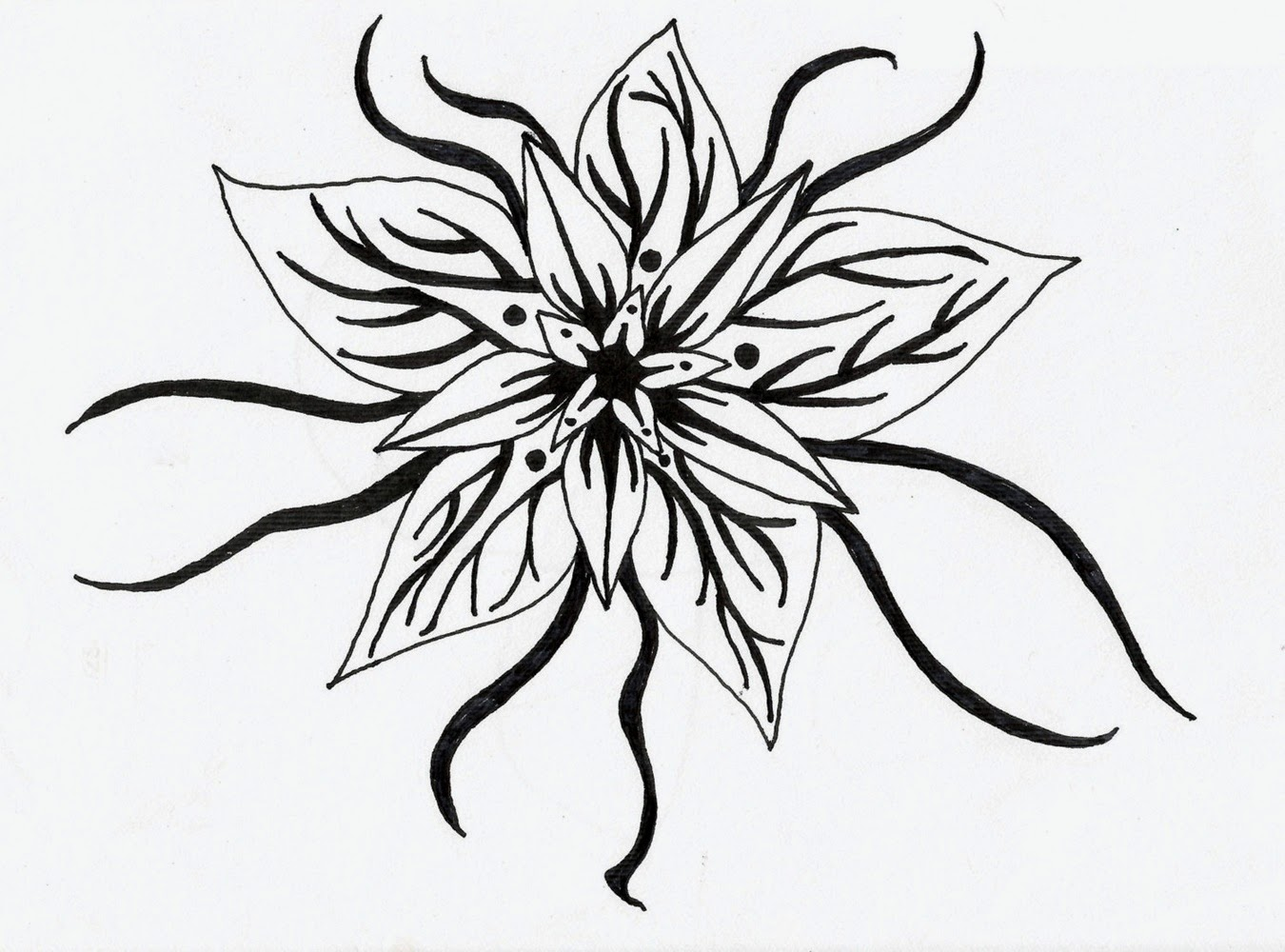 Black And White Flower Design Many Flowers
