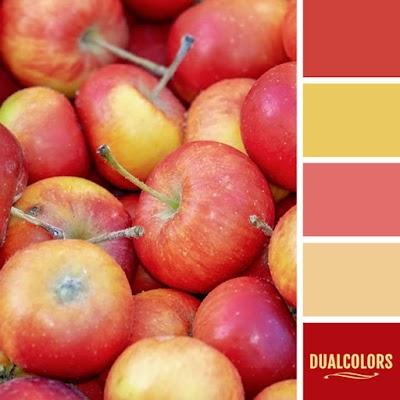 Color Paleta 88