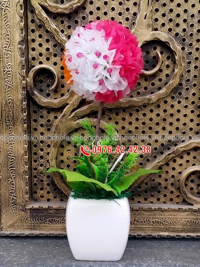 Hoa da pha le o Son Tay