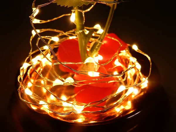 DIY : rose lumineuse sous cloche