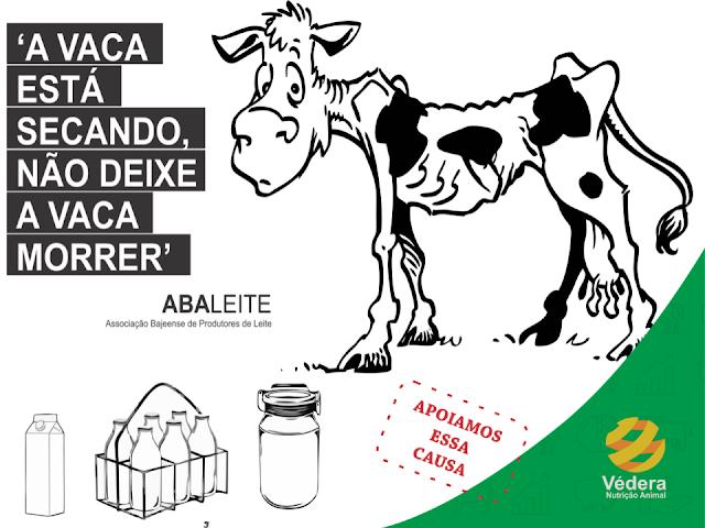 """Produtores de Gaúchos criam campanha contra baixos preços pagos ao leite,  """"A vaca está secando, não deixe a vaca morrer"""""""