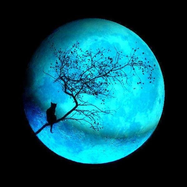 Anclaje de luz rayma luna llena de julio lunita for Cambio lunar julio 2016