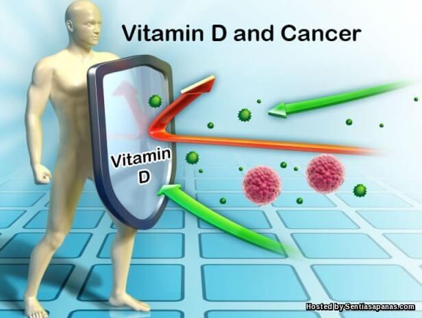 Apa itu Vitamin D