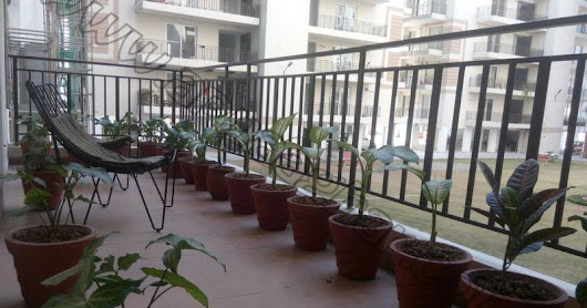 3 BHK 1960 Sq ft Semi-furnished (Own your Happiness at Just 5%) with all Basic Amenities available @ Economical rates.