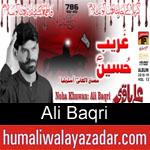 https://www.humaliwalyazadar.com/2018/10/ali-baqri-nohay-2019.html