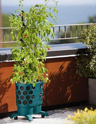 Honeycomb Tomato Planter
