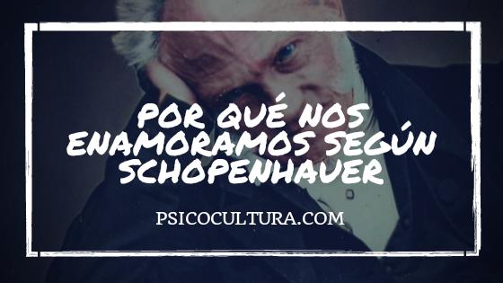 Por qué nos enamoramos según Schopenhauer