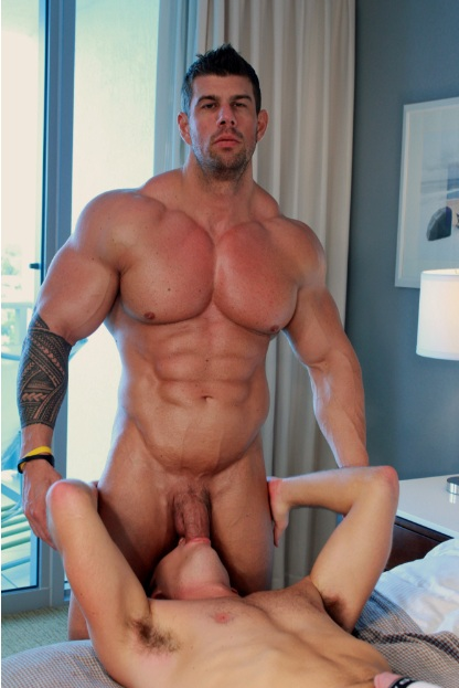 Zeb atlas pool