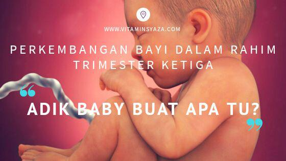 baby trimester ketiga