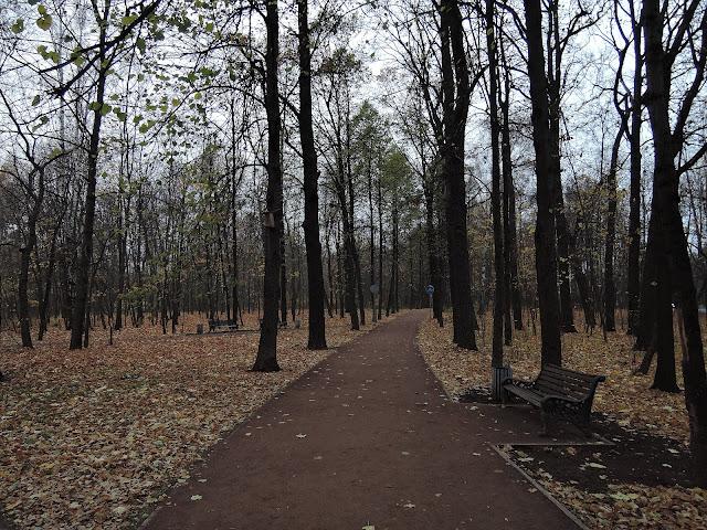 парк сокольники фонтан