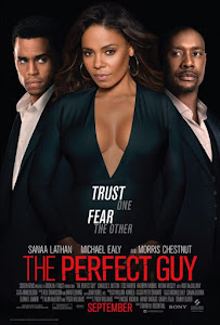 The Perfect Guy Poster