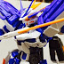 Review: MG 1/100 Gundam Astray Blue Frame D by YS Honten