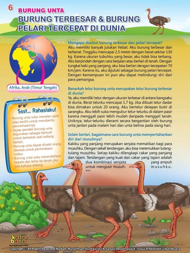 Burung Unta - Burung Terbesar dan Pelari Tercepat di Dunia