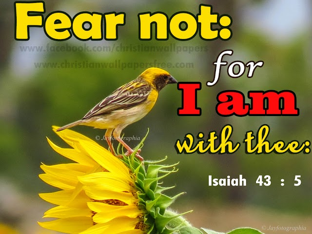 Isaiah Bible Verse Wallpapers | ஏசாயா Bible Quotes