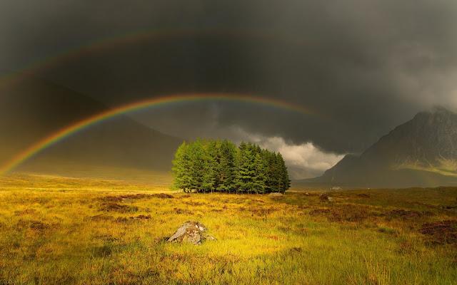 Landschap met gras, bomen en een regenboog