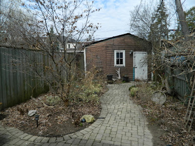 Paul Jung Gardening Services a Toronto Gardening Company Parkdale Spring Backyard Garden Cleanup Before