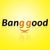 Acquistare dal sito Bangood: recensione prodotti cuscini a forma di ceppo di legno