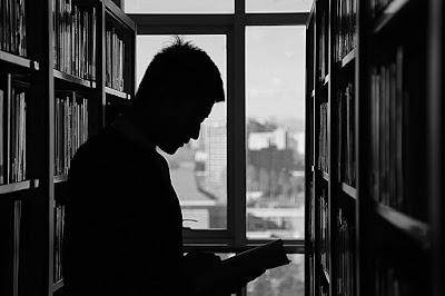 Pustakawan, Pemustaka dan Ide Menulis