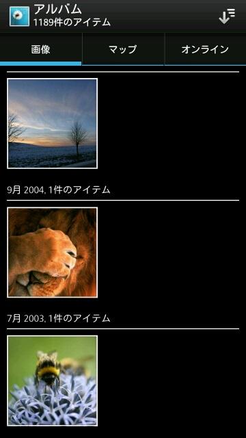 ライオンの画像を隠します