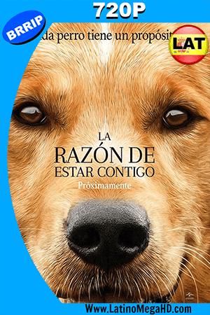 La Razon De Estar Contigo (2017) Latino HD 720p ()