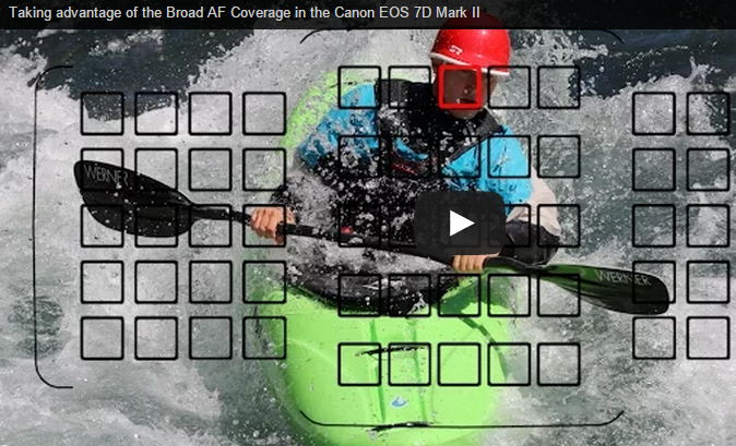 Understanding the Broad AF Coverage in the Canon EOS 7D Mark II