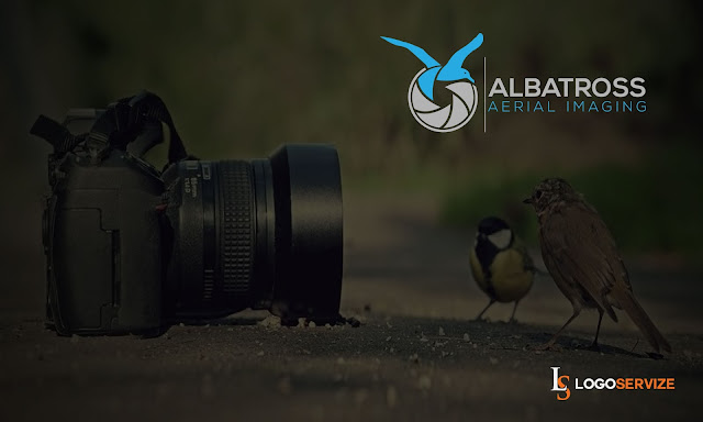 Bird Creative and Professional Photography Logo