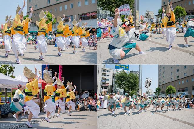 天狗連、熊本地震被災地救援募金チャリティ阿波踊りの記事のカバー写真