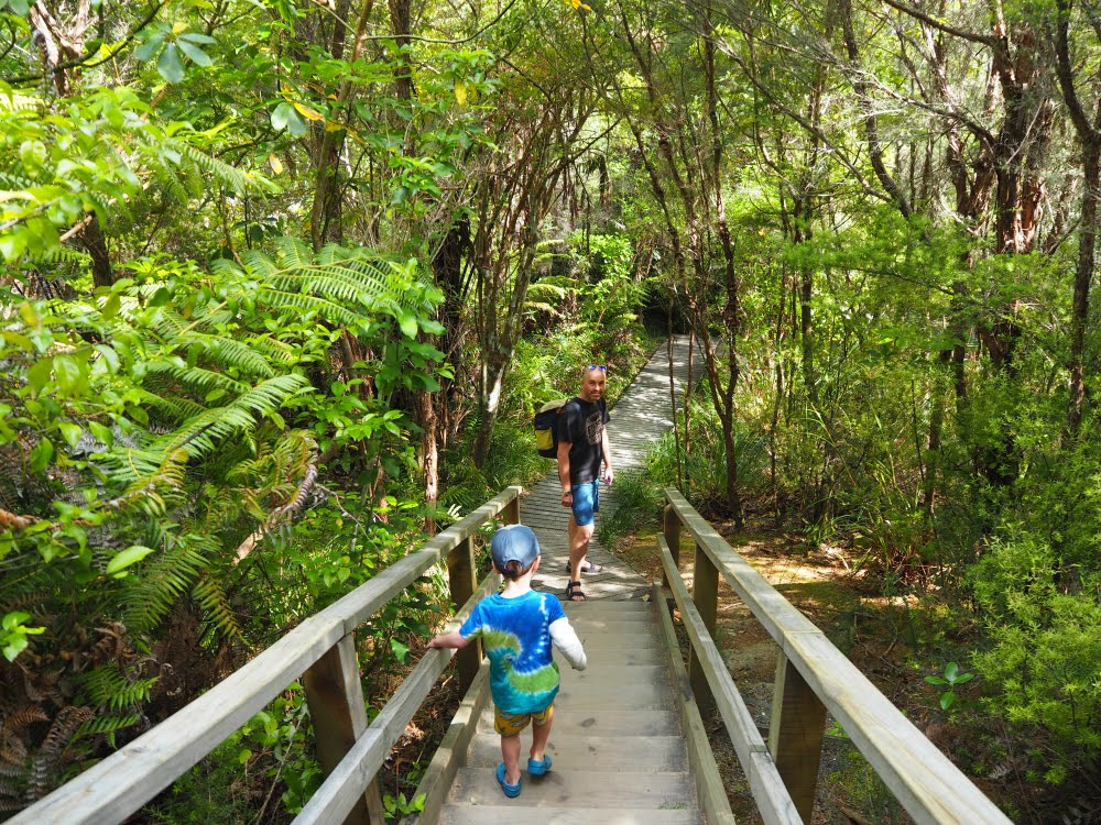 By hellopeagreen, Family travel in New Zealand and flying long haul with an under 5 year old. #familytravel #travel #take12trips #newzealand