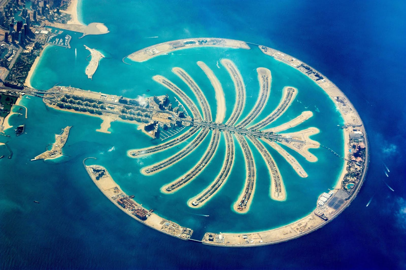 Island: palm island