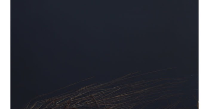 Geneva Skeen - Dark Speech