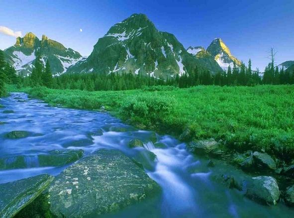 4 Manfaat Dan Kelebihan Mata Air Pegunungan