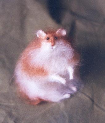 Beautiful Crafts Cat Kitten Hamster Sheep Crafts Cini Clips