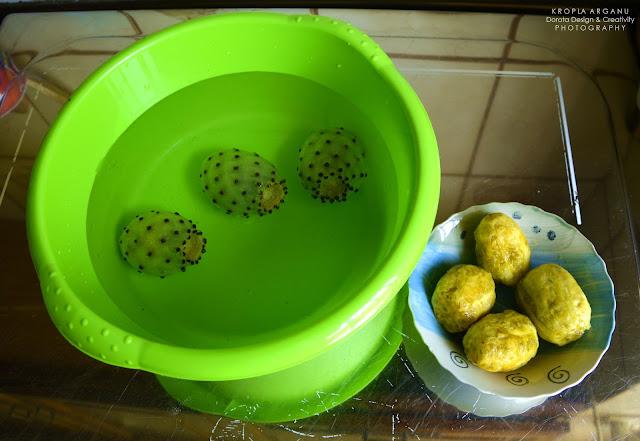 Kropla olejku z opuncji figowej
