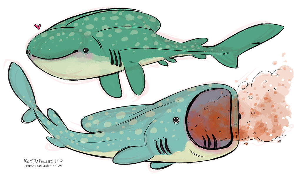 Whale Shark Drawing
